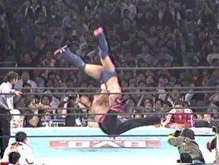プロレスの垂直落下式DDTとかいう技はアウンの呼吸だよな?