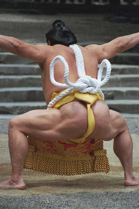 「人類最強の格闘技は相撲でござる、力士には誰も勝てないでござる」